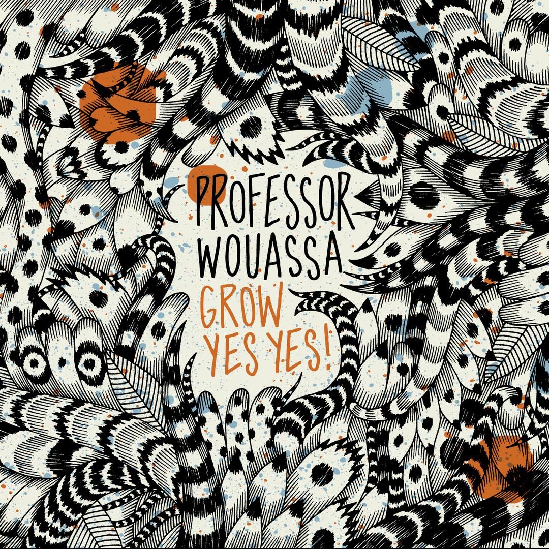 Professor Wouassa – Grow Yes Yes !